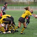 36IMG_0831T