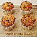 Muffins abricot & amande