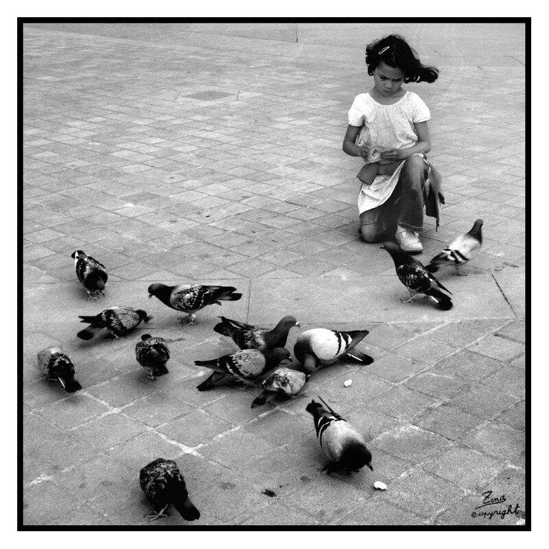 La petite fille et les pigeons