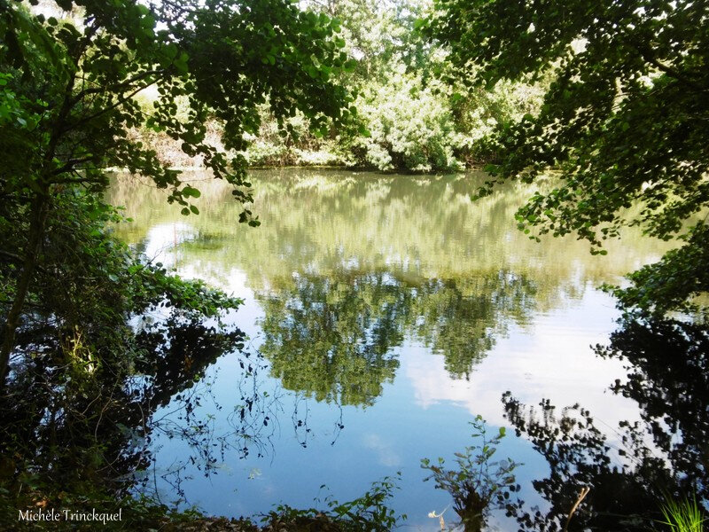 1-Balade Etang Bois de Boulogne 100719