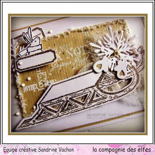 Sandrine VACHON 27 nov LCDE (7)