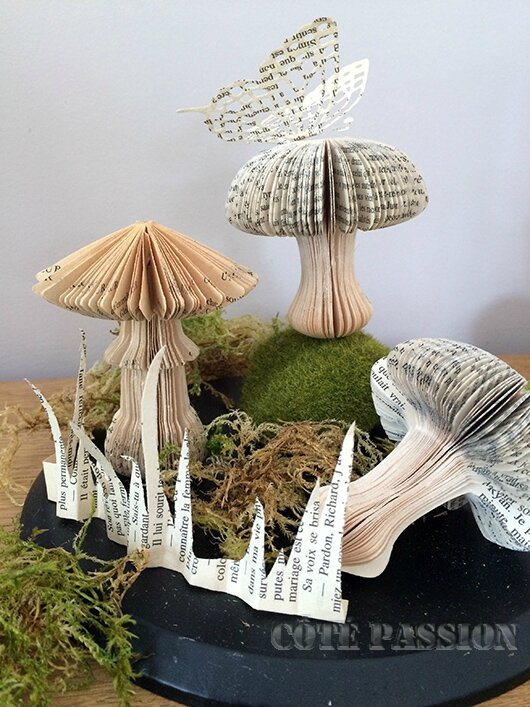 Champignon1# Book cut #Côté Passion