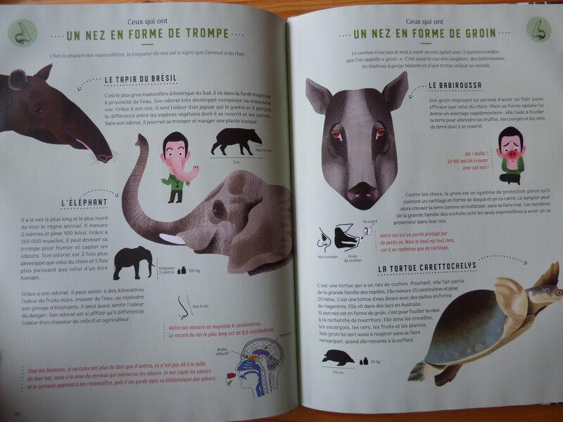 Même pas bêtes (1)