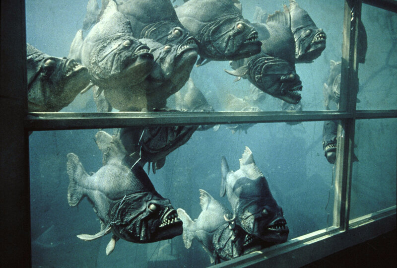 piranhas-02