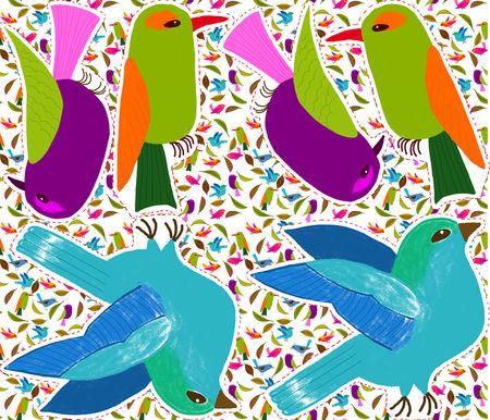 cousin_oiseau_vert