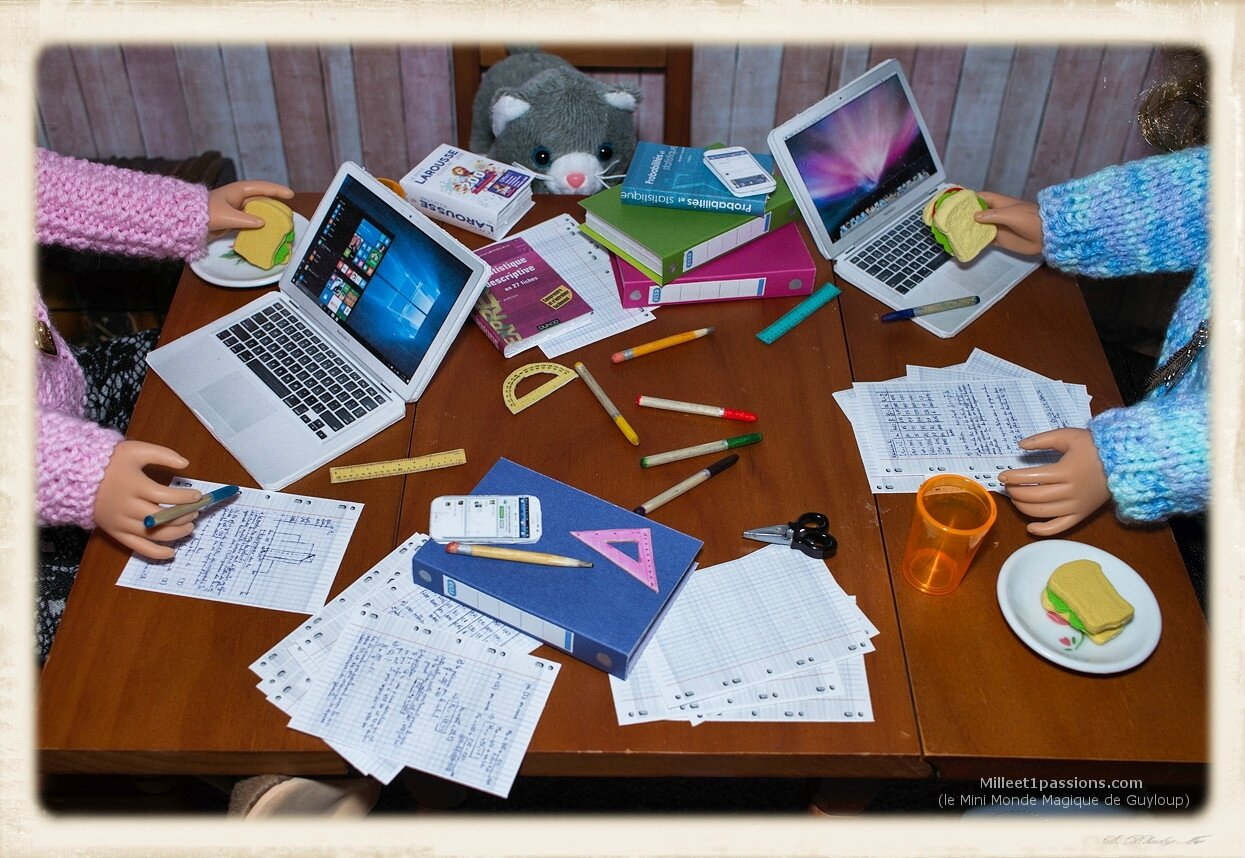 Révisions scolaires et casse-croûte + éléments à imprimer offerts - School Revisions and Snack + free printable items