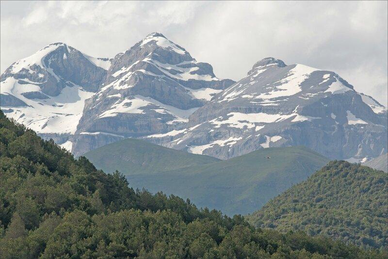 Escalona 120616 16 massif Mont Perdu rapace