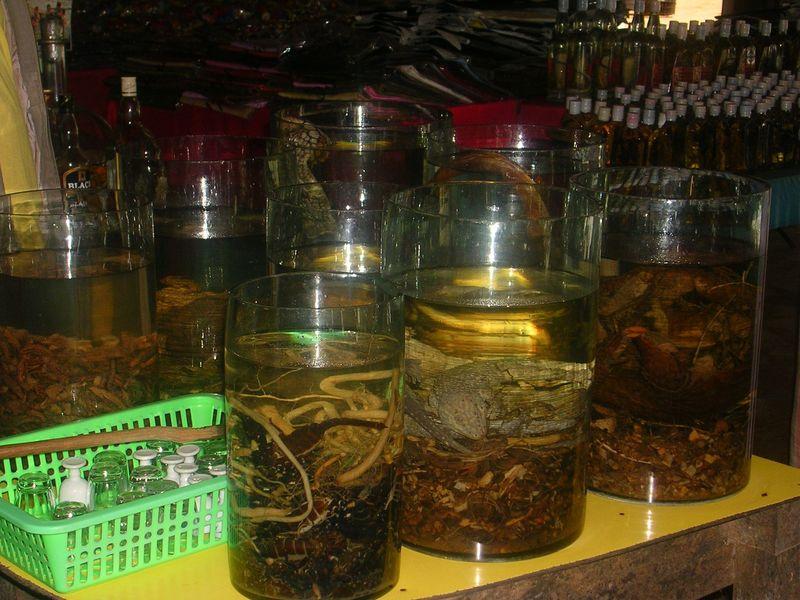 reptiles dans alcool de riz