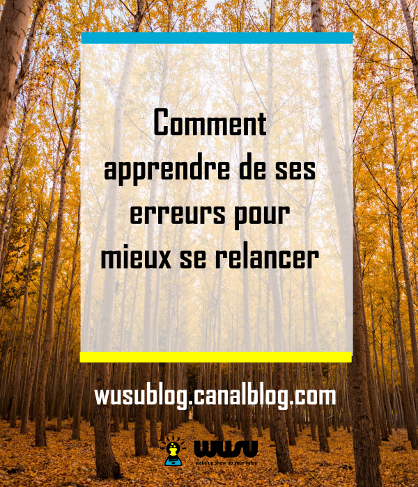 apprendre-echecs-motivation-coaching-wusubox-winniendjock-2017