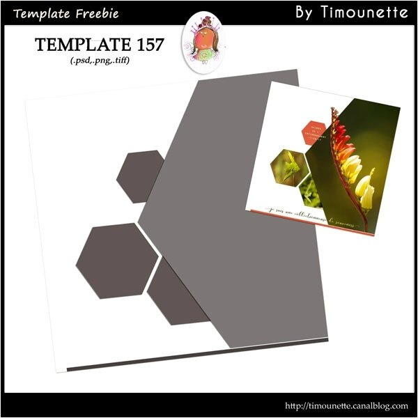 preview Template 157 by Timounette