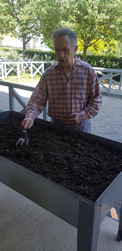 Alain plantations