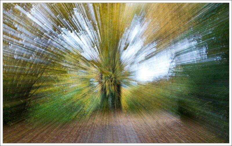 zoom automne 171116 4