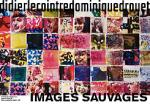 2018_images_sauvages