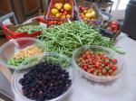 17-récoltes du jour
