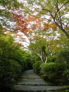Japon_Kyoto_2009_2101