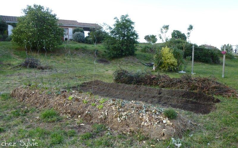 Potager permaculture 2e butte 02