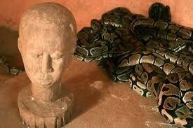 """Résultat de recherche d'images pour """"temple des pythons"""""""