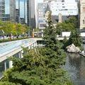2010-09 Toronto 097