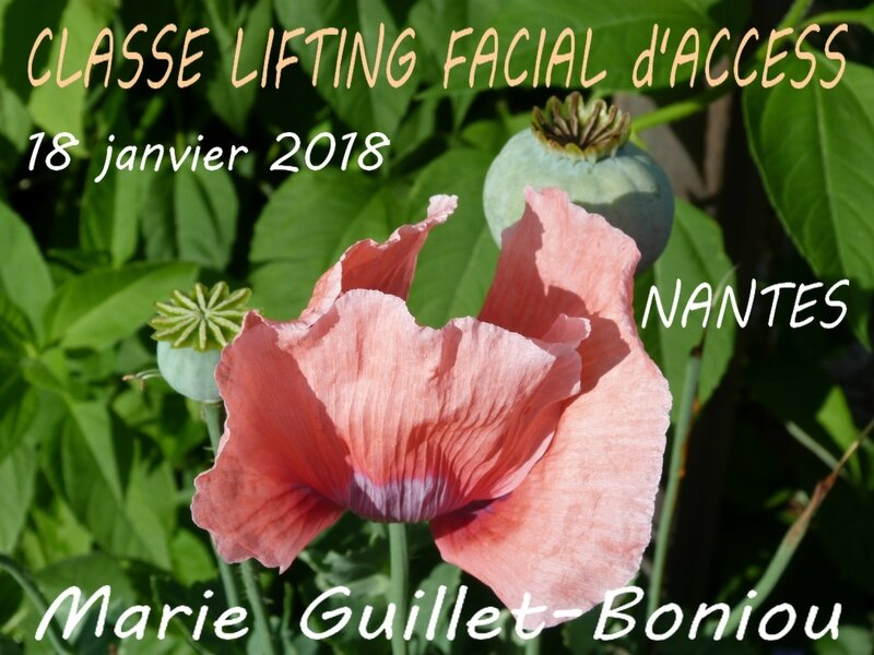 Classe Lifting Facial 18