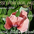 Classe lifting facial d'access