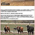 Trois signes du toro