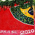 Brésil - sept/oct 2010