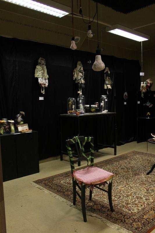 expo cabinet curiosité001
