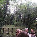 jardin sauvage -Nono (5)
