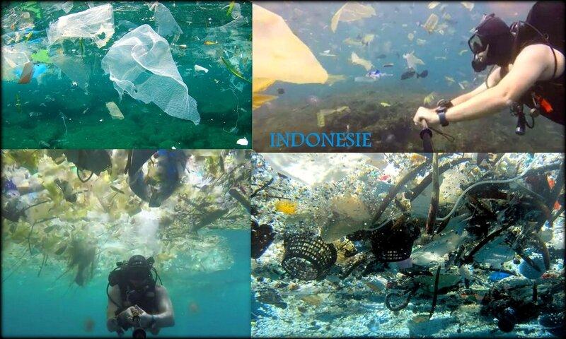 POLLUTIONS_PLASTIQUES_INDONESIE_