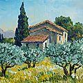Mas dans les oliviers en Provence