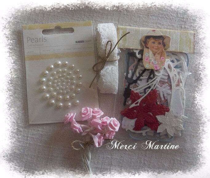 171115 Miss Majorelle 01