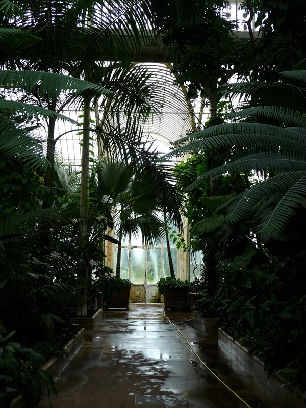 Palm House à Kew