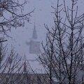 Balade sous la neige- Ahuy-Messigny-Vantoux - 31.01.14