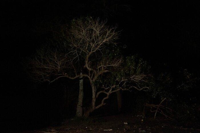 david Lemor-Snapshots 43-Mayotte
