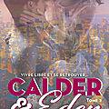 Calder et eden tome 2 de mia sheridan