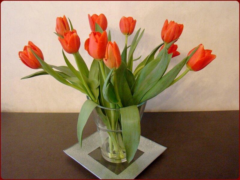 val_tulipe