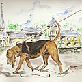aquarelle 24x32 chien de saint-hubert