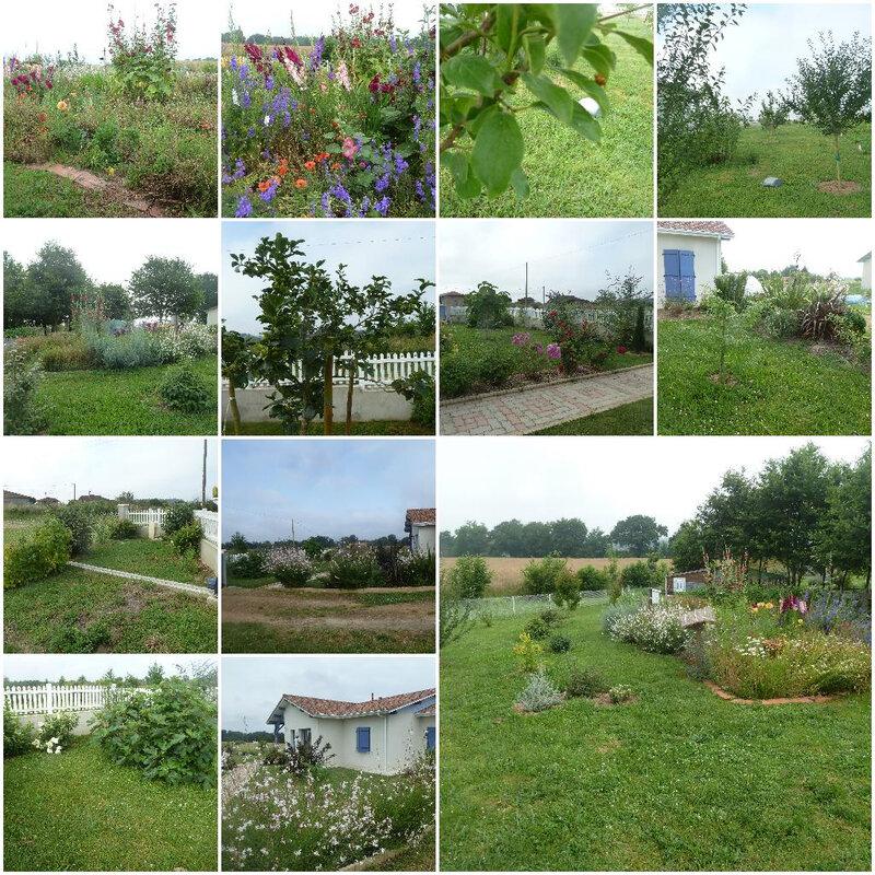 juin jardin
