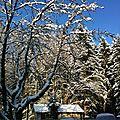 Chez nous sous la neige....