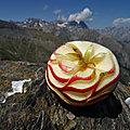 Pomme à la montagne #12