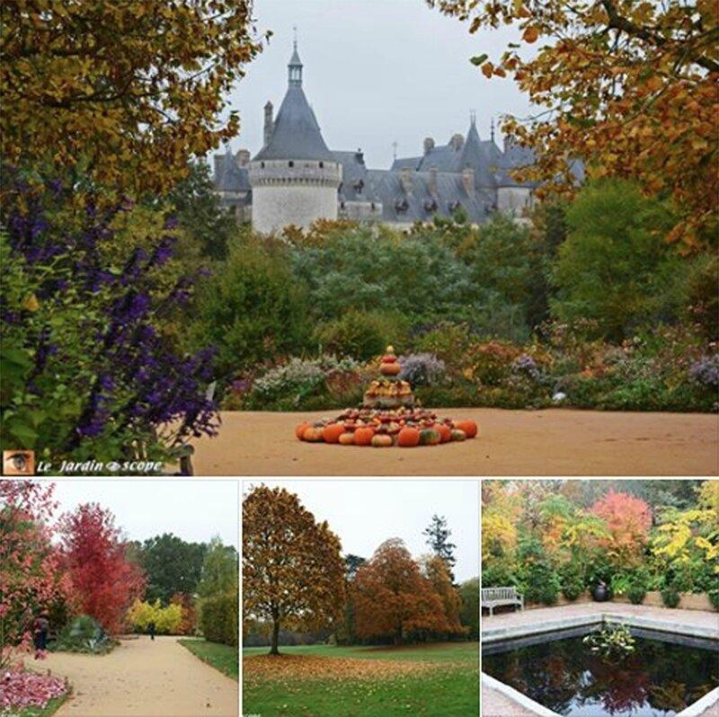 Splendeurs-d'automne-à-Chaumont-Sur-Loire