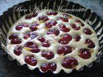 Gâteau aux prunes rougeâtres sauvages de juillet 002
