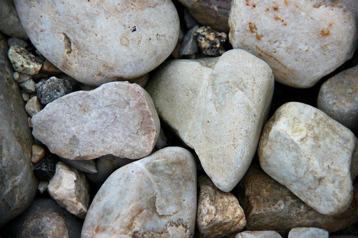 Coeur (Bretagne)_6711