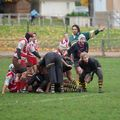 23IMG_0567T