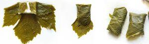 feuilles de vigne pliage