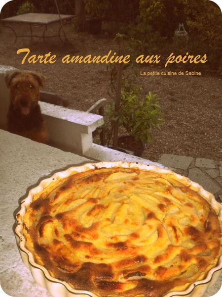 Tarte_amandine_aux_poires