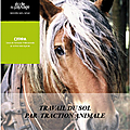 Initiation à la traction animale - cfppa st ismier - isère