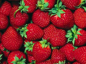 Summer_Strawberries