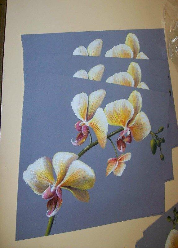 01 ORCHIDEE -prendre-3-dessins-identiques