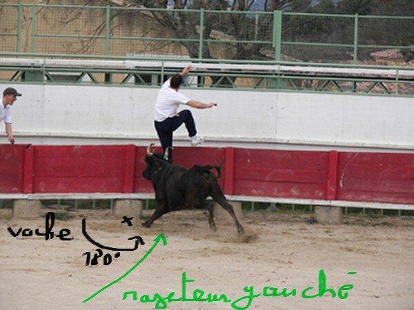 course_24_02_07_18